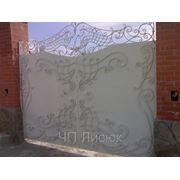 Кованные ворота, калитки фото