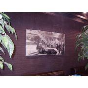 Интерьерная печать (плакаты афиши и пр.) фото
