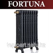Чугунные Радиаторы GuRaTec FORTUNA фото