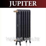 Чугунные Радиаторы GuRaTec JUPITER фото