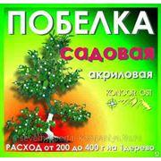 Побелка для садовых деревьев (п/эведро) 3 кг фото