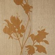 AS Creation - Эксклюзив - Цветок на коричн. клетке (8096-36) фото