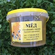 Мёд белой акации фото