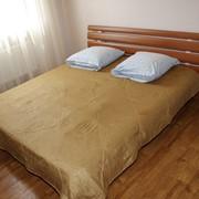 Люкс (2-х комнатный) - 300 грн. в сутки фото