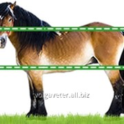 Электроизгородь Olli для Лошадей 220 В - Лето 1 км фото