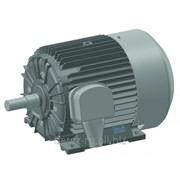 Трехфазный асинхронный электродвигатель серии АО4–355S–6 фото