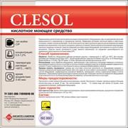 Кислотное моющее средство CLESOL фото