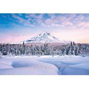 """Фотообои """"Изящная гора"""" Wizard&Genius (Швейцария) фото"""