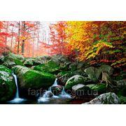 Фотообои водопад 020 фото