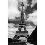 "Фотообои ""Эйфелева башня"" Wizard&Genius (Швейцария) фото"
