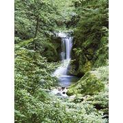 """Фотообои """"Весенний водопад"""" Wizard&Genius (Швейцария) фотография"""