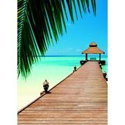 """Фотообои """"Райский пляж"""" Wizard&Genius (Швейцария) фото"""