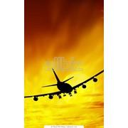 Авиатуры в Египет фото