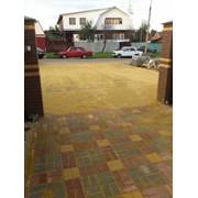 Тротуарная плитка узор фото