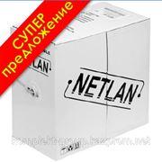 Кабель NETLAN U/UTP 2 пары, Кат.5, внутренний, 500м фото