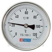 Термометр Биметаллический ТБ-100-1 L=40мм фото