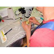 Трансплантация эмбрионов КРС фото