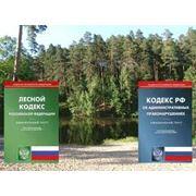 Государственный лесной надзор фото