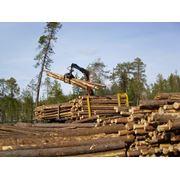 Оборудование для лесозаготовок фото