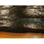 4381 Натуральная кожа кобры, цвет чёрный, SV фото
