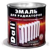 Эмаль для радиаторов Dali фото