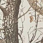 Ткань камуфлированная «Саржа» лесные дизайны с ВО фото