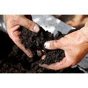 Обработка почвы способ Наутил фото