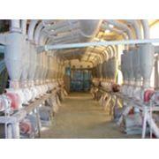 Проектирование предприятий хранения и переработки зерна фото