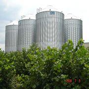 Строительство комплексов зернохранения фото