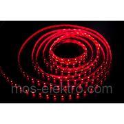 LS 3528 12V 60led/m R (красная) 5m 24W фото