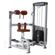 Торс-машина Bronze Gym D-011 фото