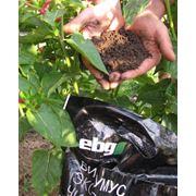 Натуральное органическое удобрение питание лечение защита растений восстановление плодородия подавление болезненной микрофлоры фото