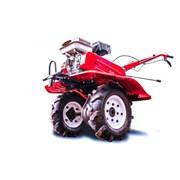 Культиватор Shtenli 900 8 л.с. с фарой и дифференц фото