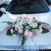 Свадебное авто фото