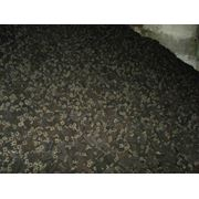 Закупка хранение и переработка маслосемян подсолнечника. фото