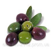 Оливковое масло Virgin Extra Испания 3л. фото