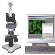 MICROS : MC 300 (TFXS) Компьютерная система анализа для флюоресценции фото