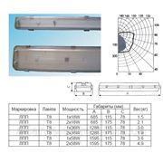 Люминесцентные светильники ЛПП 1*36 (IP-65) фото