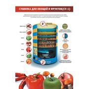 Электрическая сушилка для фруктов и овощей СУ-1 (6 лотков) фото