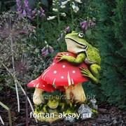Мухомор с лягушками большой фото