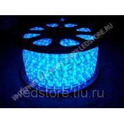 2-х жильный круглый светодиодный дюралайт (LED Rope Light)