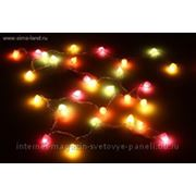 Гирлянда малина Цвет мульти 30 лампочек 3.6 м фото