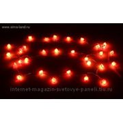 Гирлянда розочки Цвет мульти 30 лампочек 3.6 м фото