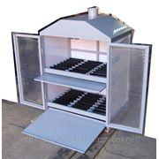 Шкаф для зарядки АкБ модель 702Б фото