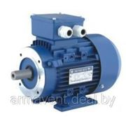 Электродвигатель АИР90L6 IE1 фото