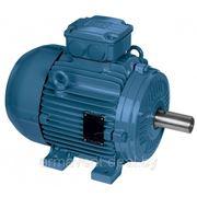 Электродвигатель АИР100S2 IE2 фото