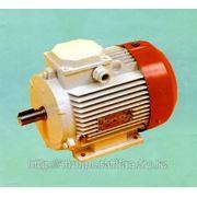 Электродвигатель многоскоростной 4АМ250М6/12у3 45/1000 22/500 фото