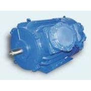 Электродвигатель 2В 250S4 (75 кВт,1500 об/мин) взрывозащищённый фото