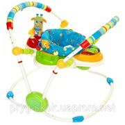 Прыгунки Bright Starts Cute Critters Activity Jumper фото