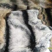 Натуральный мех кролика рекса фото